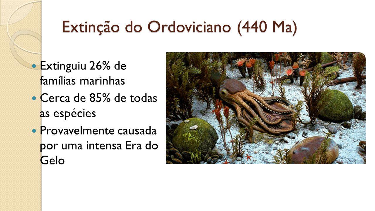 Extinção do Ordoviciano (440 Ma) Extinguiu 26% de famílias marinhas Cerca de 85% de todas as espécies Provavelmente causada por uma intensa Era do Gelo