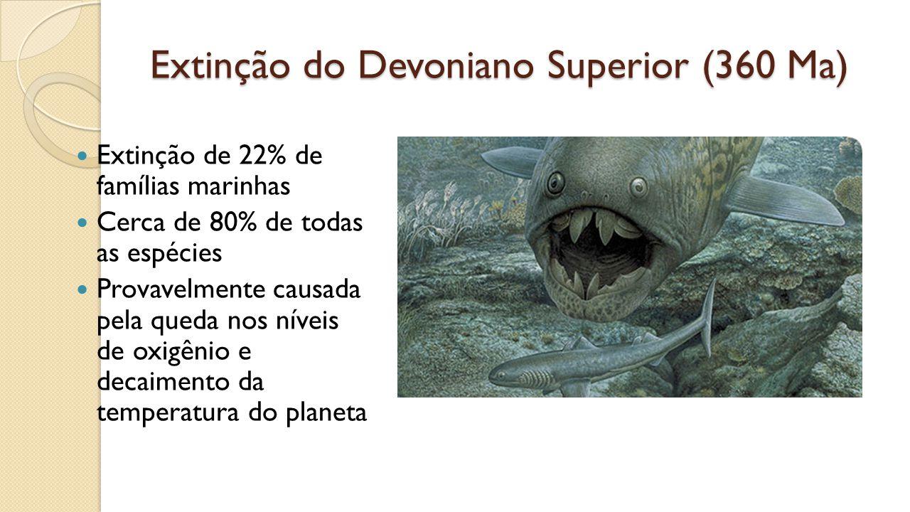 Extinção do Devoniano Superior (360 Ma) Extinção de 22% de famílias marinhas Cerca de 80% de todas as espécies Provavelmente causada pela queda nos níveis de oxigênio e decaimento da temperatura do planeta