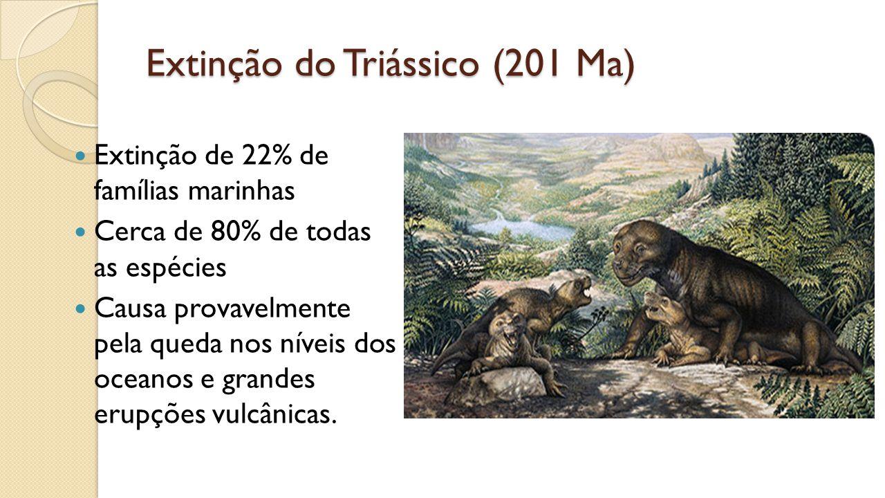Extinção do Triássico (201 Ma) Extinção de 22% de famílias marinhas Cerca de 80% de todas as espécies Causa provavelmente pela queda nos níveis dos oceanos e grandes erupções vulcânicas.