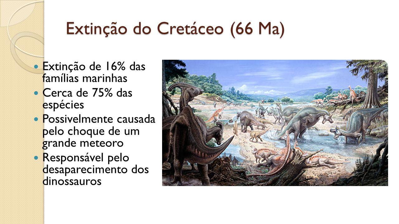 Extinção do Cretáceo (66 Ma) Extinção de 16% das famílias marinhas Cerca de 75% das espécies Possivelmente causada pelo choque de um grande meteoro Responsável pelo desaparecimento dos dinossauros