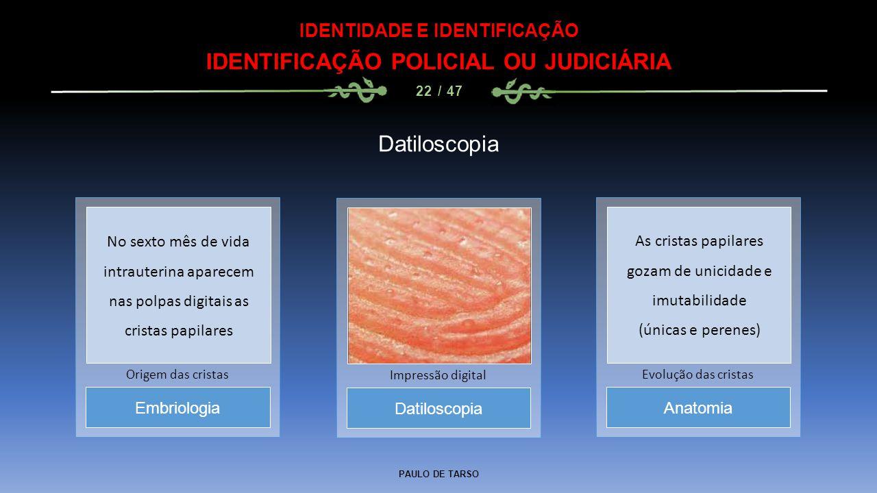 PAULO DE TARSO IDENTIDADE E IDENTIFICAÇÃO IDENTIFICAÇÃO POLICIAL OU JUDICIÁRIA 22 / 47 Datiloscopia Impressão digital Embriologia Origem das cristas A