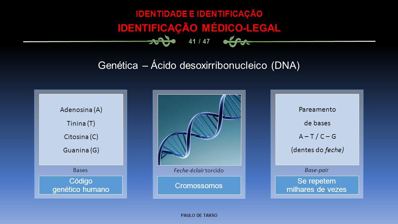 PAULO DE TARSO IDENTIDADE E IDENTIFICAÇÃO IDENTIFICAÇÃO MÉDICO-LEGAL 41 / 47 Genética – Ácido desoxirribonucleico (DNA) Cromossomos Feche-éclair torci