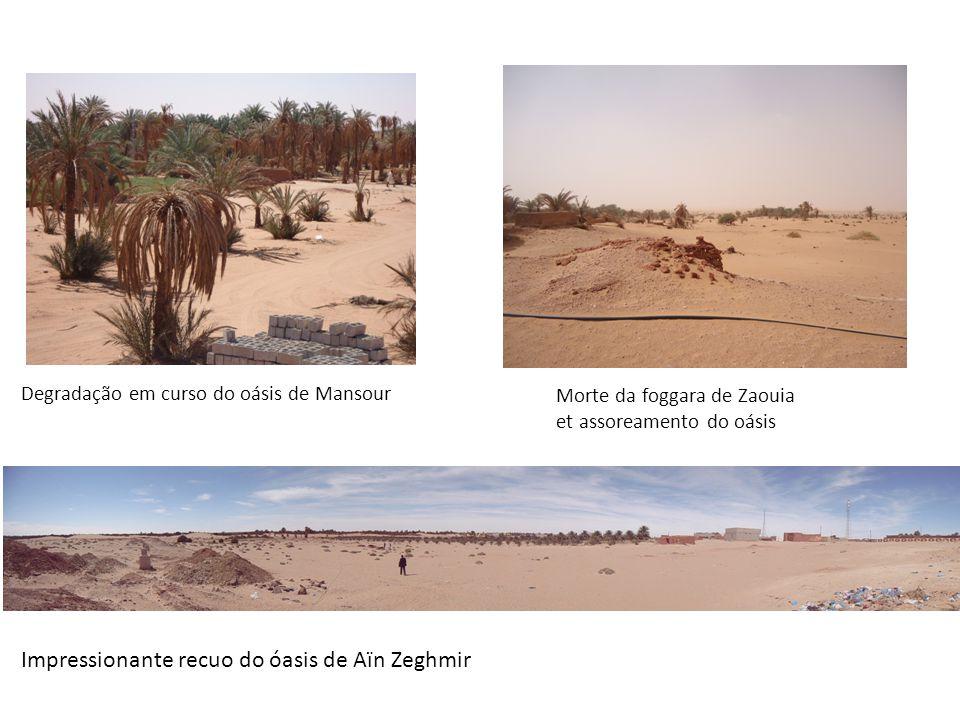 Degradação em curso do oásis de Mansour Morte da foggara de Zaouia et assoreamento do oásis Impressionante recuo do óasis de Aïn Zeghmir