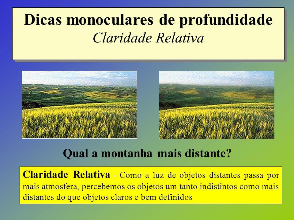 Dicas monoculares de profundidade Claridade Relativa Claridade Relativa - Como a luz de objetos distantes passa por mais atmosfera, percebemos os obje