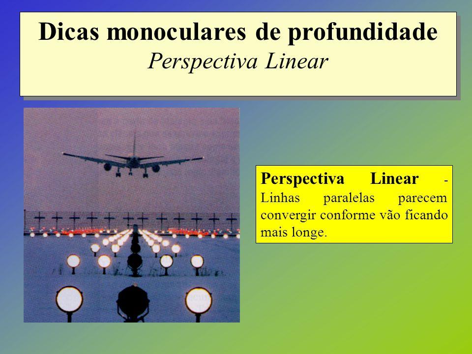 Dicas monoculares de profundidade Perspectiva Linear Perspectiva Linear - Linhas paralelas parecem convergir conforme vão ficando mais longe.