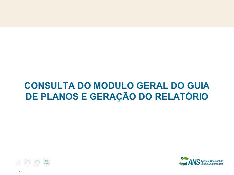 CONSULTA DO MODULO GERAL DO GUIA DE PLANOS E GERAÇÃO DO RELATÓRIO 3