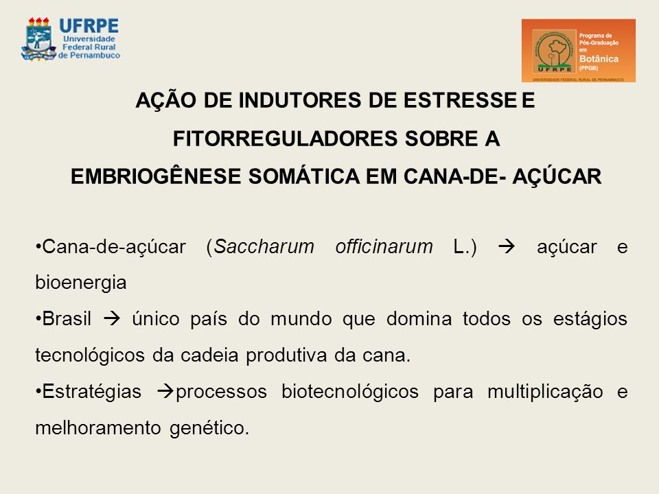 AÇÃO DE INDUTORES DE ESTRESSE E FITORREGULADORES SOBRE A EMBRIOGÊNESE SOMÁTICA EM CANA-DE- AÇÚCAR Cana-de-açúcar (Saccharum officinarum L.)  açúcar e bioenergia Brasil  único país do mundo que domina todos os estágios tecnológicos da cadeia produtiva da cana.