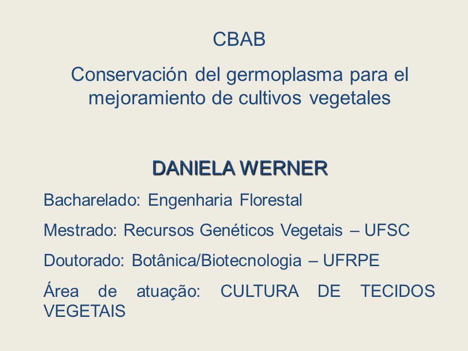 CBAB Conservación del germoplasma para el mejoramiento de cultivos vegetales DANIELA WERNER Bacharelado: Engenharia Florestal Mestrado: Recursos Genéticos Vegetais – UFSC Doutorado: Botânica/Biotecnologia – UFRPE Área de atuação: CULTURA DE TECIDOS VEGETAIS