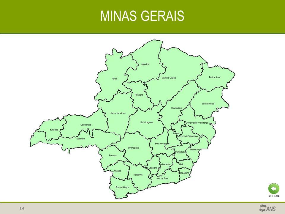 14 MINAS GERAIS