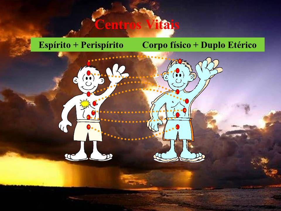 Centros Vitais Espírito + Perispírito Corpo físico + Duplo Etérico