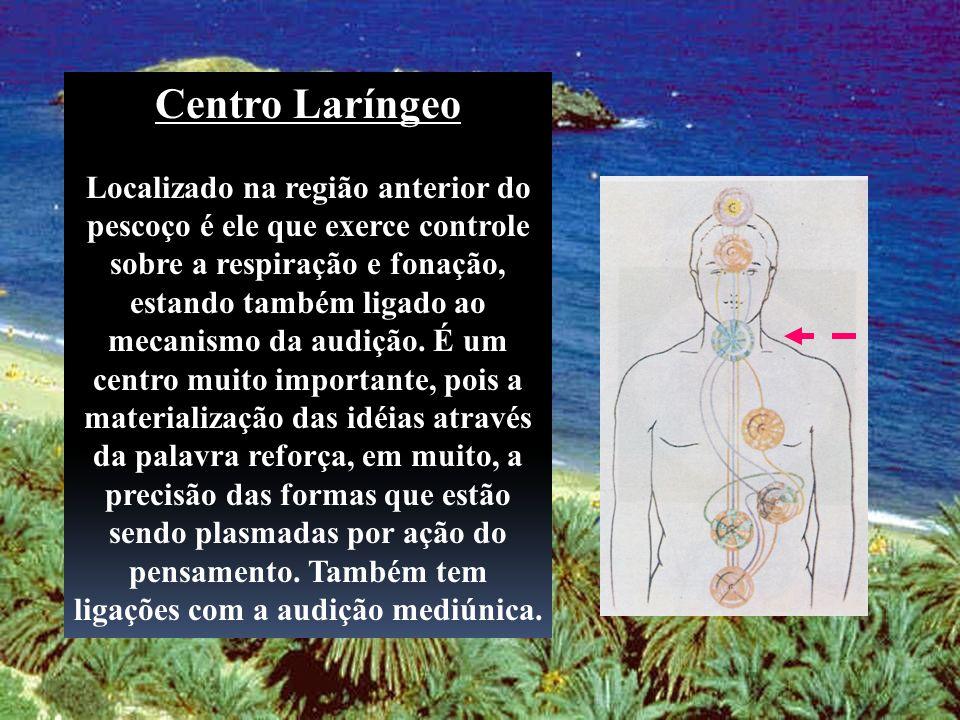 Centro Laríngeo Localizado na região anterior do pescoço é ele que exerce controle sobre a respiração e fonação, estando também ligado ao mecanismo da