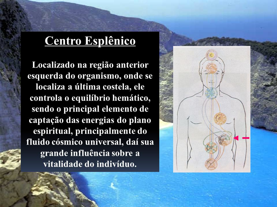 Centro Esplênico Localizado na região anterior esquerda do organismo, onde se localiza a última costela, ele controla o equilíbrio hemático, sendo o p