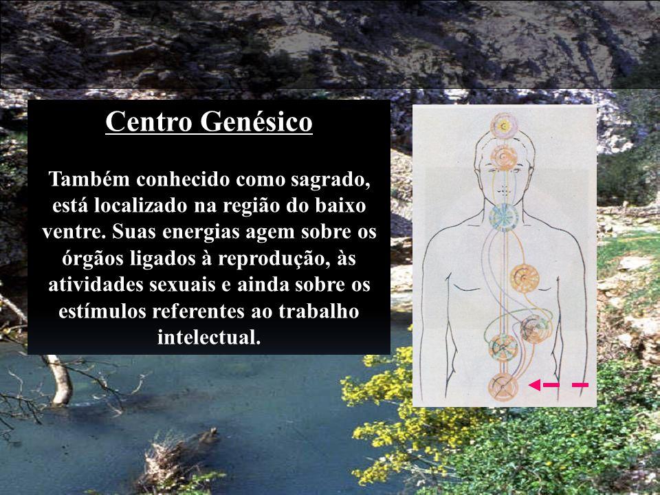 Centro Genésico Também conhecido como sagrado, está localizado na região do baixo ventre. Suas energias agem sobre os órgãos ligados à reprodução, às