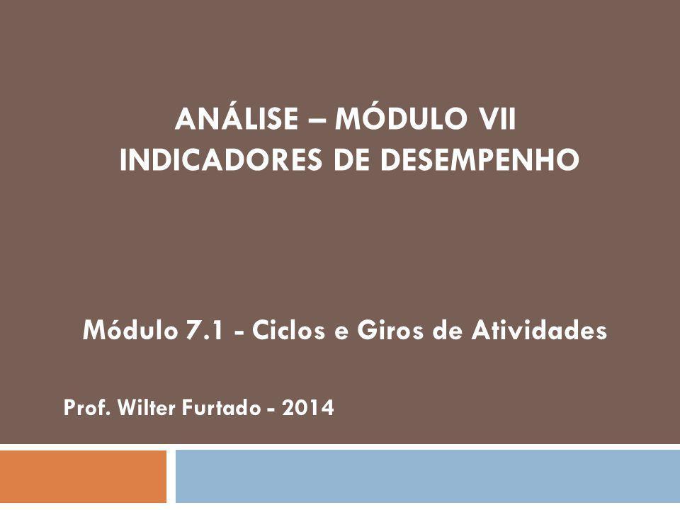ANÁLISE – MÓDULO VII INDICADORES DE DESEMPENHO Módulo 7.1 - Ciclos e Giros de Atividades Prof.