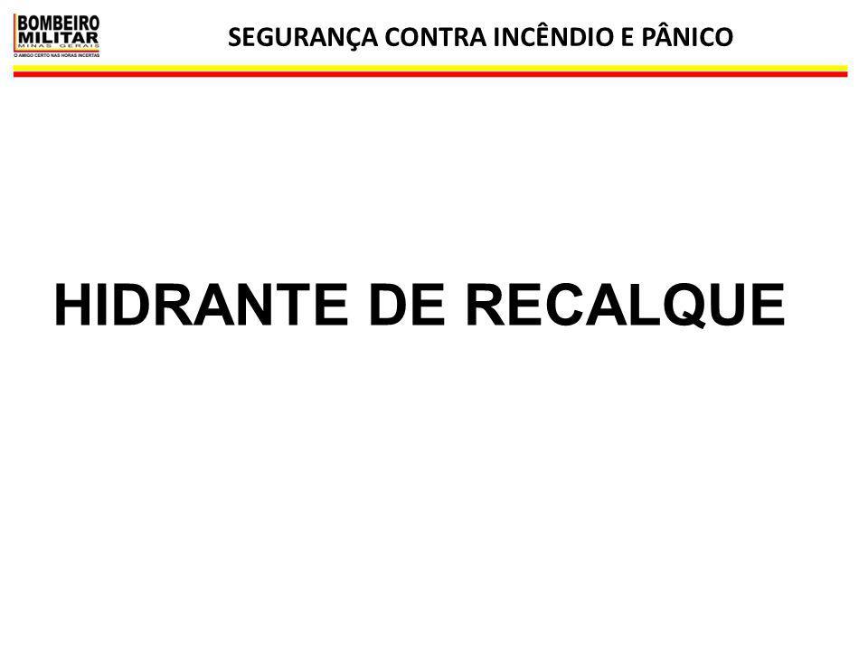 SEGURANÇA CONTRA INCÊNDIO E PÂNICO 10 HIDRANTE DE RECALQUE