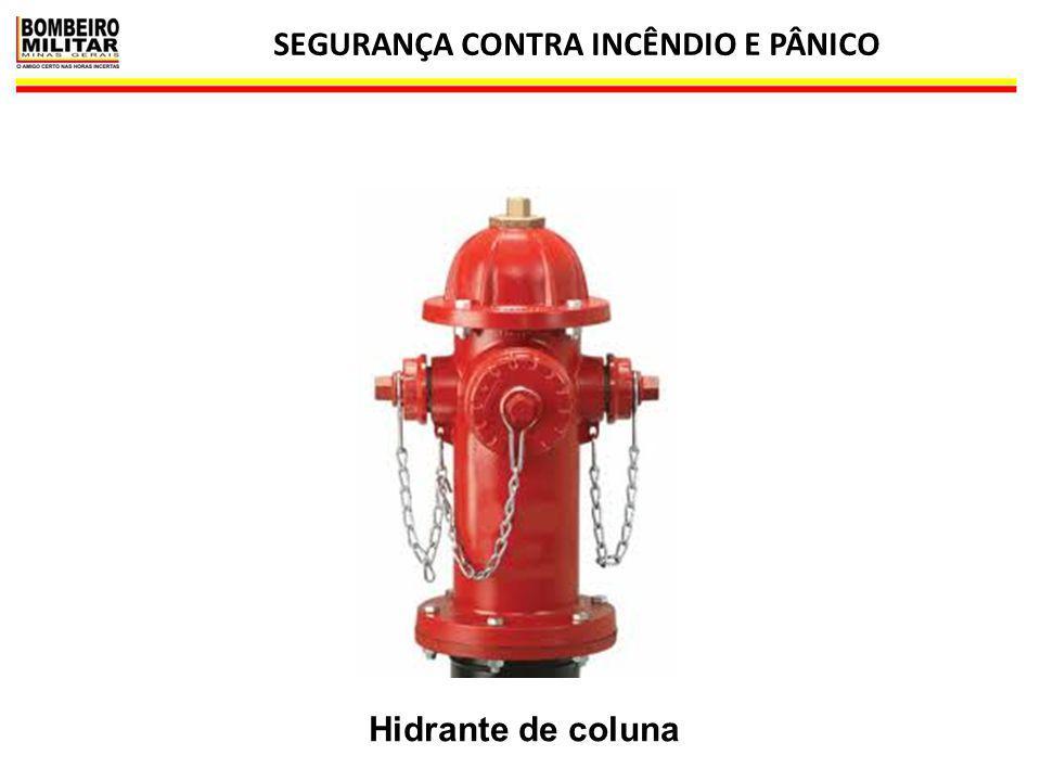 SEGURANÇA CONTRA INCÊNDIO E PÂNICO 17 Hidrante de coluna