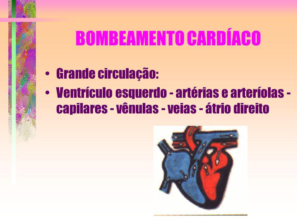 BOMBEAMENTO CARDÍACO Grande circulação: Ventrículo esquerdo - artérias e arteríolas - capilares - vênulas - veias - átrio direito