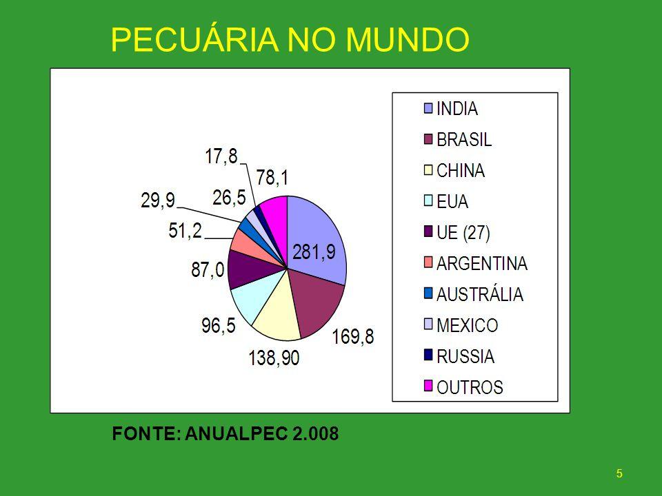 5 FONTE: ANUALPEC 2.008 PECUÁRIA NO MUNDO
