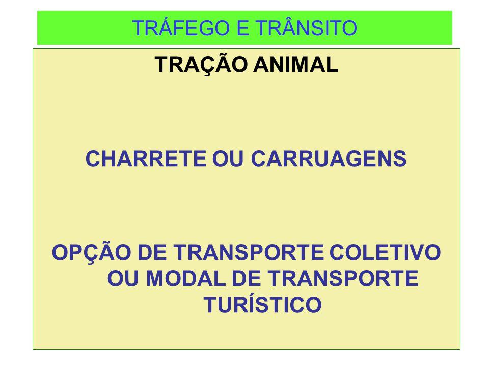 TRÁFEGO E TRÂNSITO TRAÇÃO ANIMAL CHARRETE OU CARRUAGENS OPÇÃO DE TRANSPORTE COLETIVO OU MODAL DE TRANSPORTE TURÍSTICO