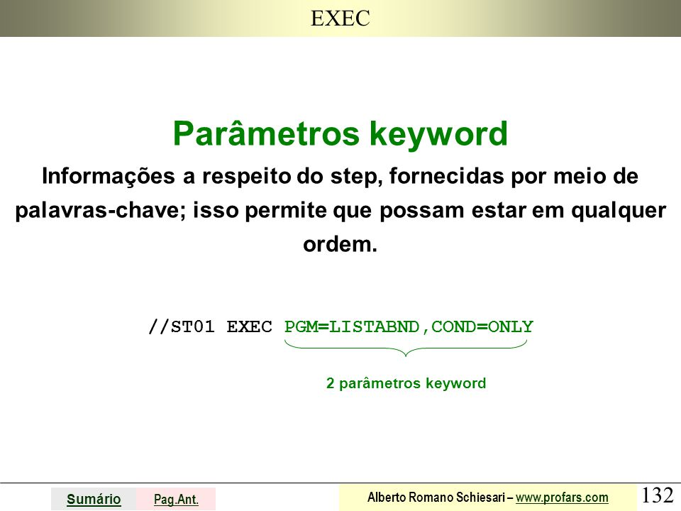 132 Sumário Pag.Ant. Alberto Romano Schiesari – www.profars.comwww.profars.com EXEC Parâmetros keyword Informações a respeito do step, fornecidas por
