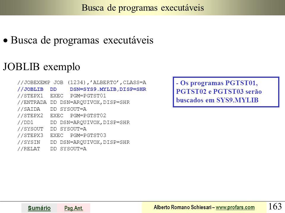 163 Sumário Pag.Ant. Alberto Romano Schiesari – www.profars.comwww.profars.com Busca de programas executáveis  Busca de programas executáveis JOBLIB