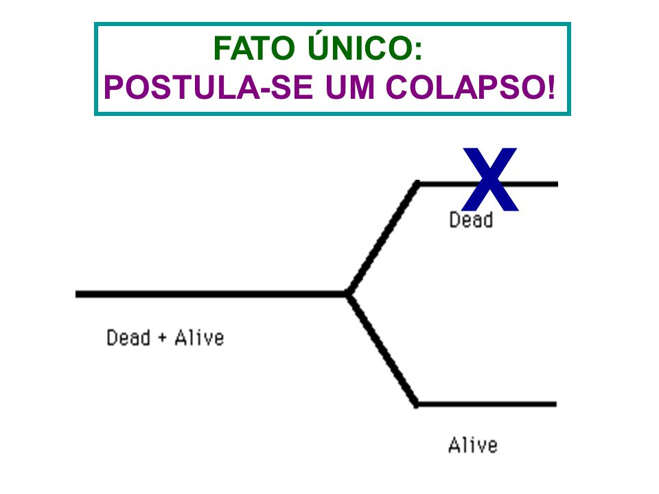X FATO ÚNICO: POSTULA-SE UM COLAPSO!