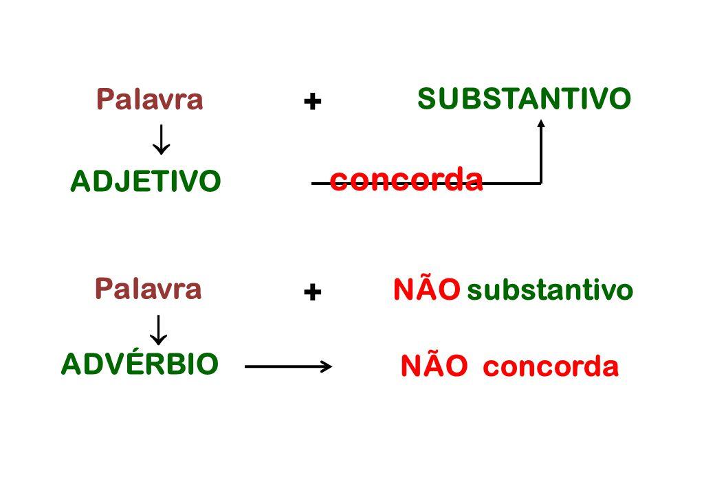 Palavra ADVÉRBIO  ADJETIVO concorda  Palavra NÃO concorda SUBSTANTIVO + + NÃO substantivo