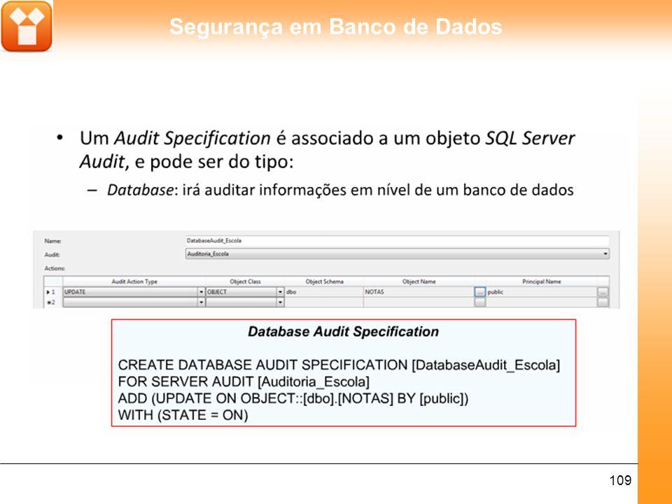 Segurança em Banco de Dados 109