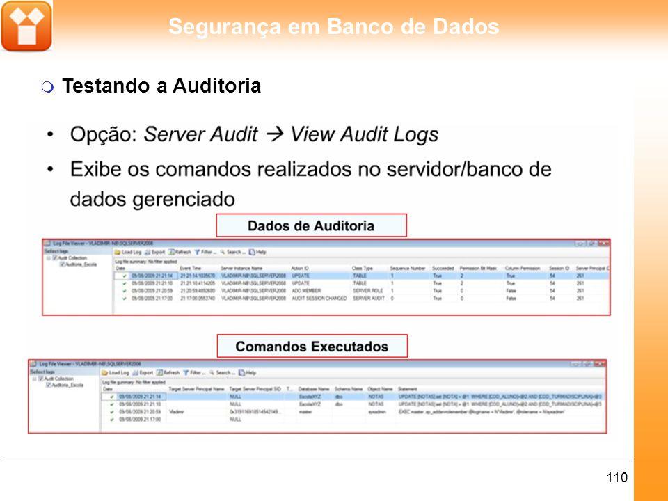 Segurança em Banco de Dados 110 m Testando a Auditoria