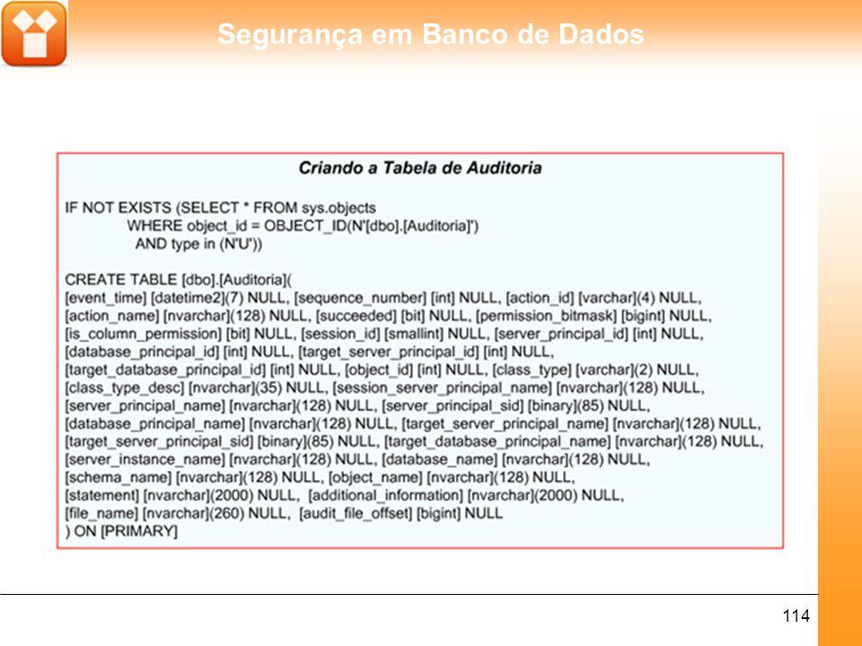 Segurança em Banco de Dados 114