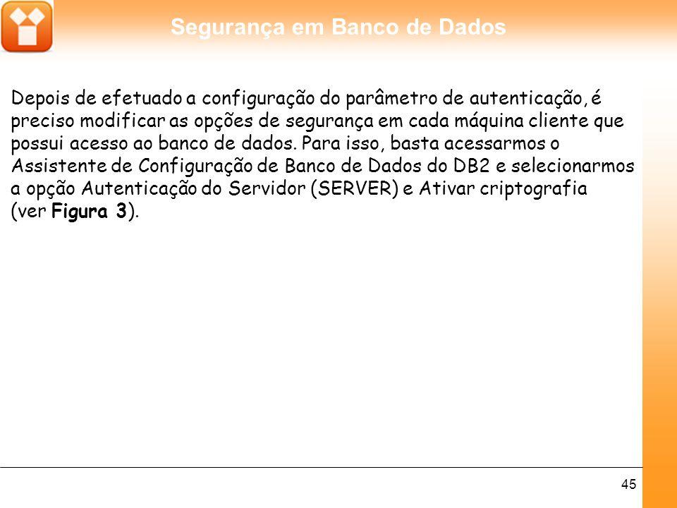 Segurança em Banco de Dados 45 Depois de efetuado a configuração do parâmetro de autenticação, é preciso modificar as opções de segurança em cada máquina cliente que possui acesso ao banco de dados.