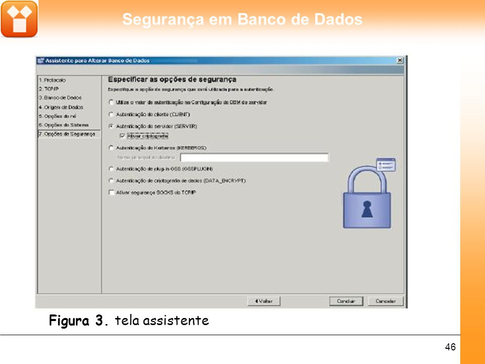 Segurança em Banco de Dados 46 Figura 3. tela assistente