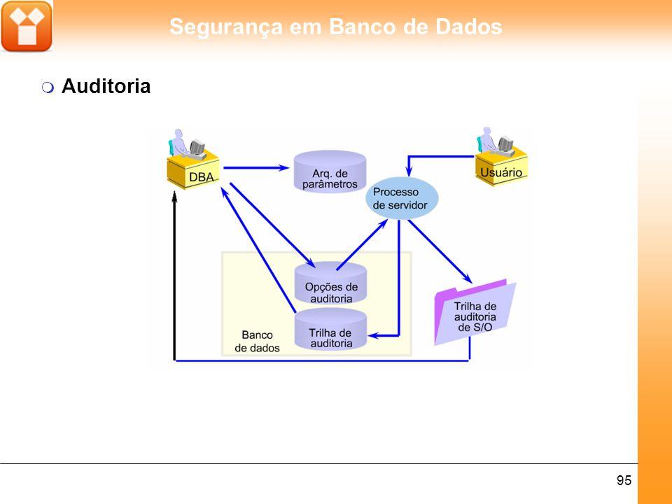 Segurança em Banco de Dados 95 m Auditoria