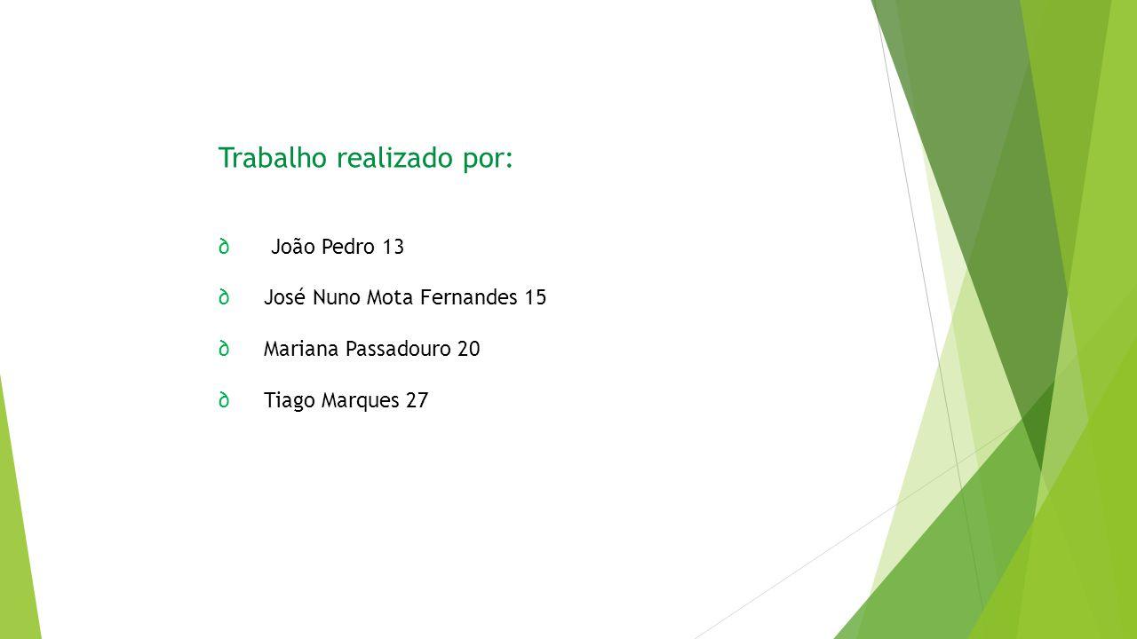 Trabalho realizado por: ∂ João Pedro 13 ∂ José Nuno Mota Fernandes 15 ∂ Mariana Passadouro 20 ∂ Tiago Marques 27
