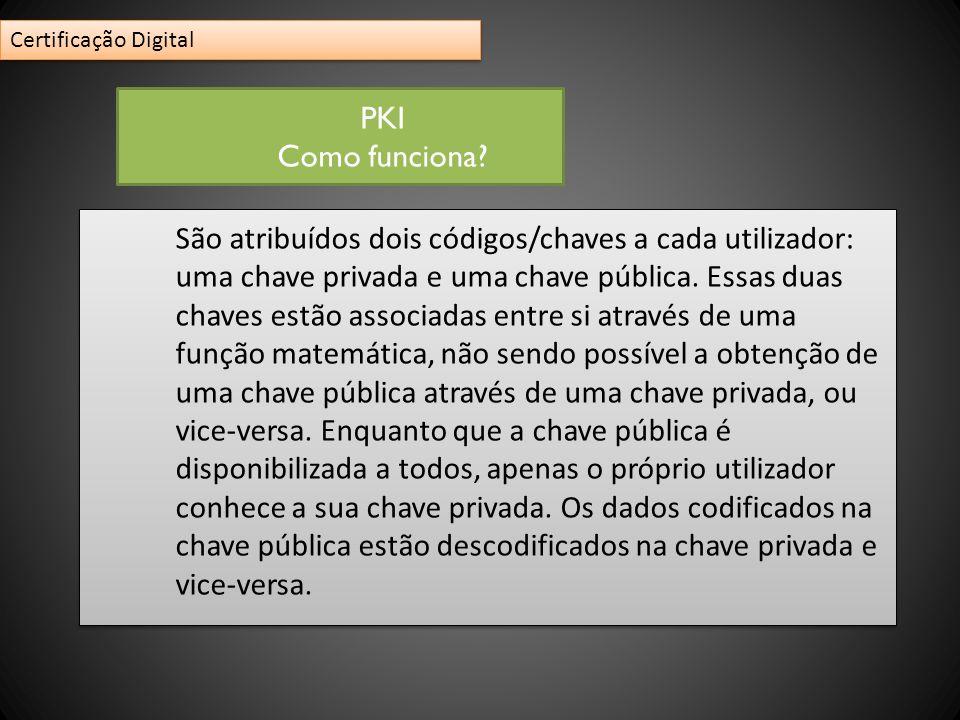 São atribuídos dois códigos/chaves a cada utilizador: uma chave privada e uma chave pública. Essas duas chaves estão associadas entre si através de um