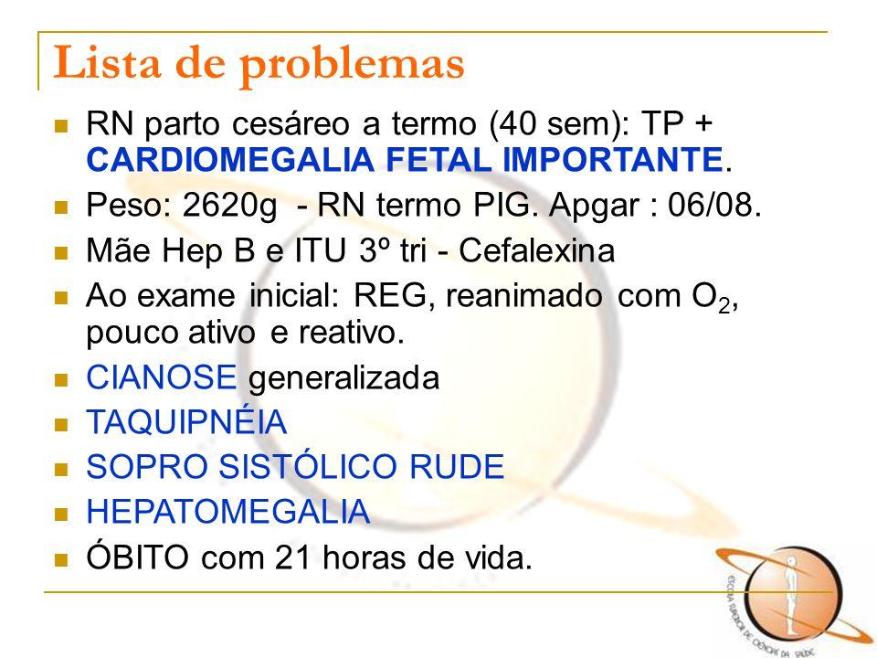 Lista de problemas RN parto cesáreo a termo (40 sem): TP + CARDIOMEGALIA FETAL IMPORTANTE. Peso: 2620g - RN termo PIG. Apgar : 06/08. Mãe Hep B e ITU