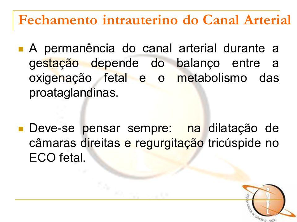 Fechamento intrauterino do Canal Arterial A permanência do canal arterial durante a gestação depende do balanço entre a oxigenação fetal e o metabolis