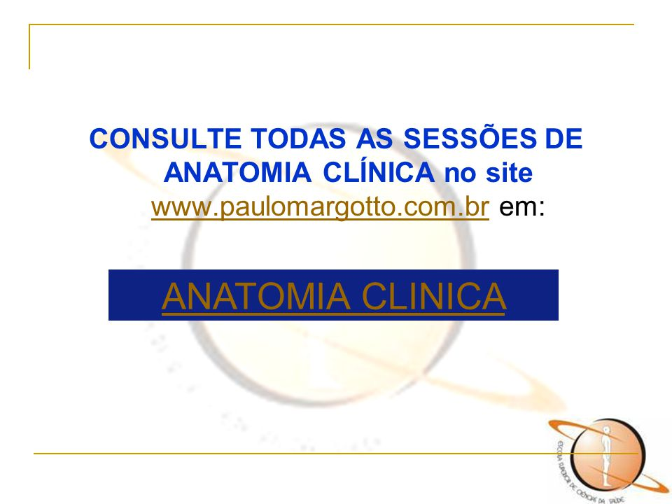 CONSULTE TODAS AS SESSÕES DE ANATOMIA CLÍNICA no site www.paulomargotto.com.br em: www.paulomargotto.com.br ANATOMIA CLINICA