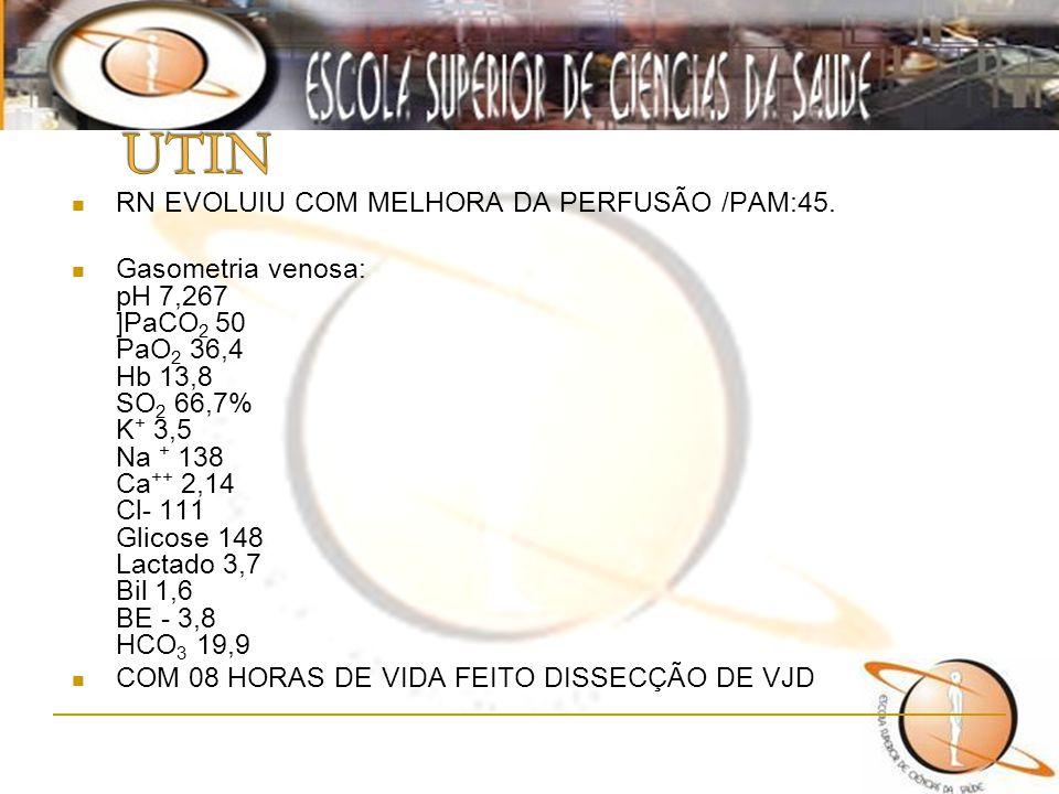 RN EVOLUIU COM MELHORA DA PERFUSÃO /PAM:45. Gasometria venosa: pH 7,267 ]PaCO 2 50 PaO 2 36,4 Hb 13,8 SO 2 66,7% K + 3,5 Na + 138 Ca ++ 2,14 Cl- 111 G