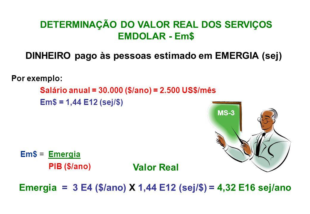 DETERMINAÇÃO DO VALOR DO ESTOQUE EMDOLAR (Em$) A emergia do estoque corresponde ao fluxo de emergia usado para a formação do estoque.