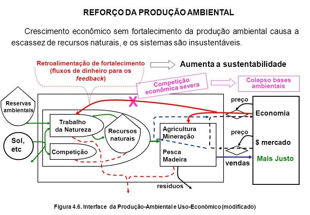 VALOR ADICIONADO E CRESCIMENTO DA TRANSFORMIDADE Uso econômico Trabalho dos Sistemas Ambientais Entradas do Meio Ambiente Preço de mercado Entradas da economia $ Uso econômico AB Recursos Ambientais Valor adicionado Recursos usados Parte do PIB promovida pela entrada ambiental Figura 4.5.