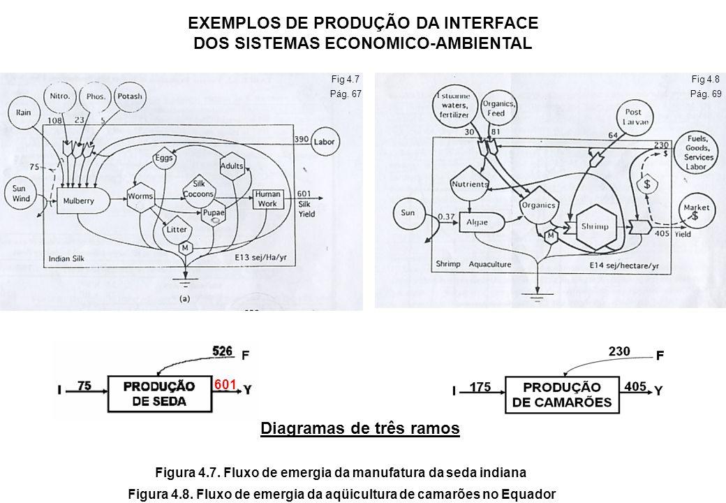 Competição Trabalho da Natureza Recursos naturais Agricultura Mineração Pesca Madeira $ mercado Economia Sol, etc resíduos vendas preço Figura 4.6.