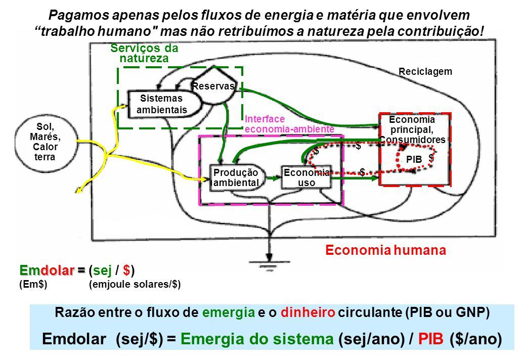 TRÊS SETORES DO SISTEMA 1 - Ambiental (áreas naturais: sistemas ambientais e reservas) 2 - Produção Ambiental-Econômica (produção primária, interface econômica) 3 - Economia capitalista (comércio, indústria, consumidores) Figura 4.1.