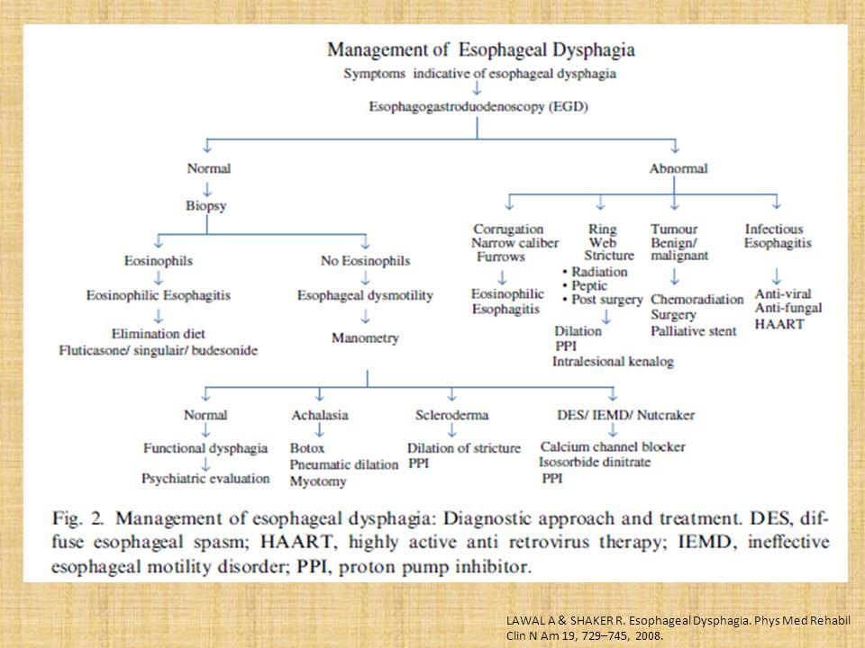 LAWAL A & SHAKER R. Esophageal Dysphagia. Phys Med Rehabil Clin N Am 19, 729–745, 2008.