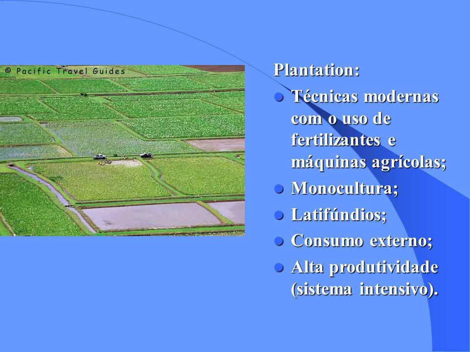 Agricultura Subsistência: Técnicas arcaicas como o uso de queimadas, gerando o esgotamento prematuro do solos; Policulturas; Minifúndios; Consumo interno; Baixa produtividade (sistema extensivo).