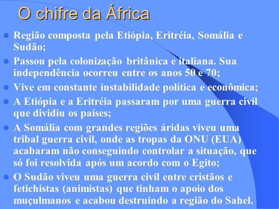 Região do Magreb Pertence a África Setentrional com os países Marrocos, Argélia e Tunísia; Foi colonizado pela França; África Centro-Oriental Também faz parte da África Setentrional com os seguintes países: Egito e Líbia; Sofreu colonização ou apenas apoio militar dos Britânicos; O Egito apresenta uma economia de subsistências apoiada no turismo e no Canal de Suez; A Líbia é rica em petróleo com economia toda apoiada no setor primário, sendo grande parceiro comercial do Brasil na região.