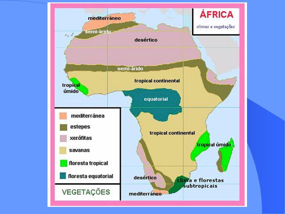 Principais movimentos de independência na África Nas colônias Britânicas o conflito mais intenso foi no Quênia na chamada Rebelião do Mau- Mau; Pela França foi a maior rebelião foi na Argélia; O Marrocos foi a pior rebelião das colônias espanholas, principalmente pelo conflito no Saara Ocidental; O Congo foi a pior rebelião das colônias belgas; Burundi e Ruanda foram as piores rebeliões entre as colônias alemãs; As últimas colônias que conquistaram independência foram as portuguesas como Angola, Guiné-Bissau e Moçambique; Exercícios e próxima aula