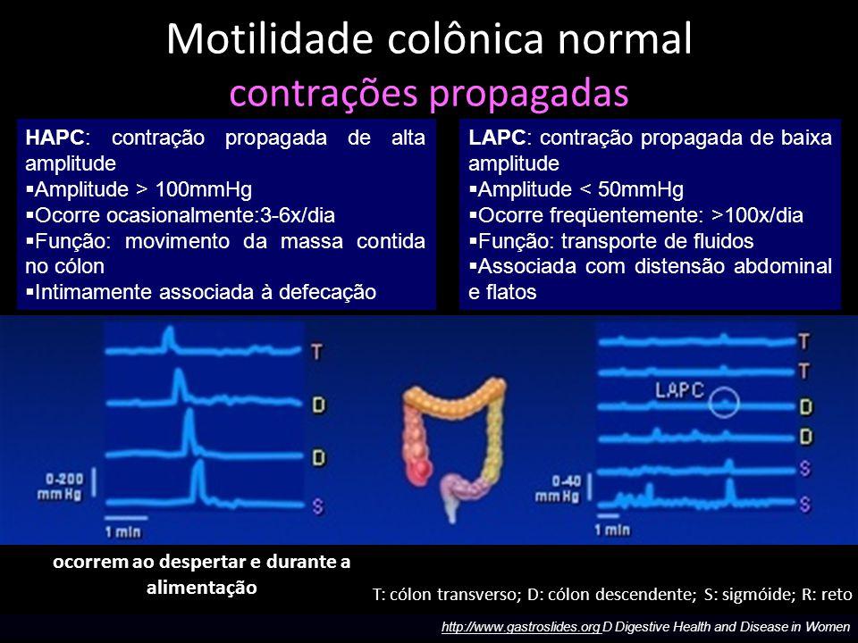 Contrações propagadas Motilidade colônica normal contrações propagadas T: cólon transverso; D: cólon descendente; S: sigmóide; R: reto HAPC: contração propagada de alta amplitude  Amplitude > 100mmHg  Ocorre ocasionalmente:3-6x/dia  Função: movimento da massa contida no cólon  Intimamente associada à defecação LAPC: contração propagada de baixa amplitude  Amplitude < 50mmHg  Ocorre freqüentemente: >100x/dia  Função: transporte de fluidos  Associada com distensão abdominal e flatos http://www.gastroslides.org D Digestive Health and Disease in Women ocorrem ao despertar e durante a alimentação