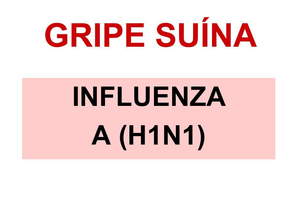 GRIPE SUÍNA INFLUENZA A (H1N1)