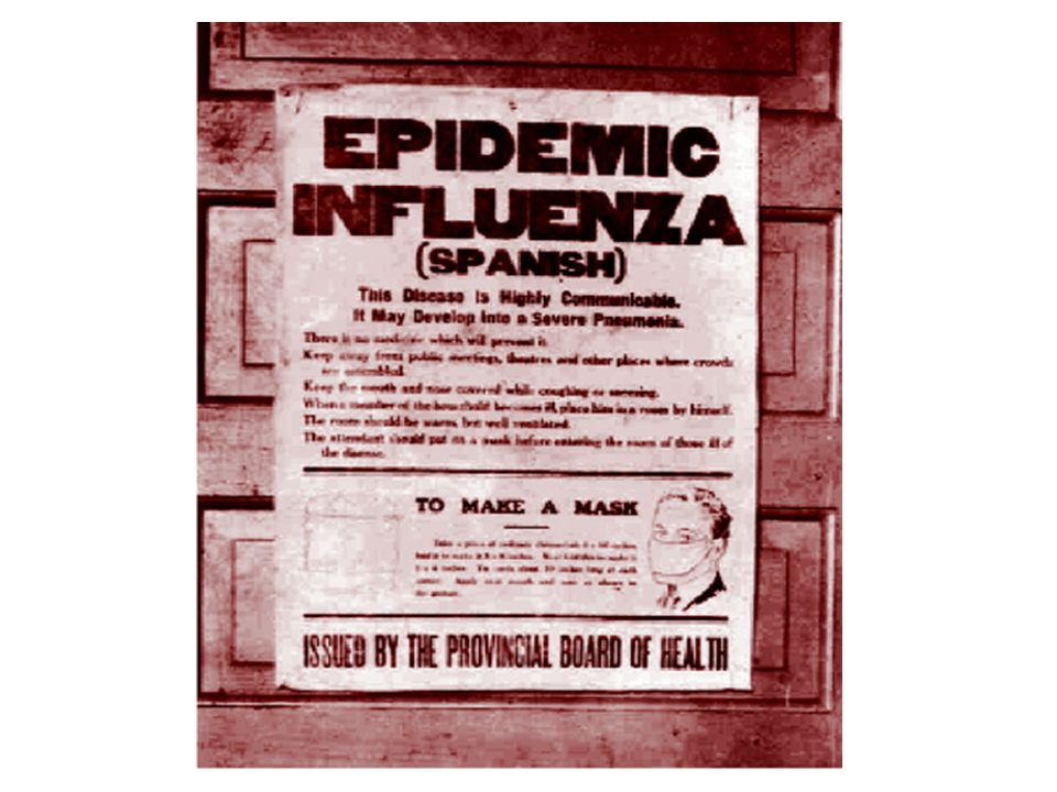 In 2005, Army scientists reported that they had reconstructed the Spanish flu virus by extracting genetic fragments from the bodies of victims exhumed from the Alaskan permafrost.